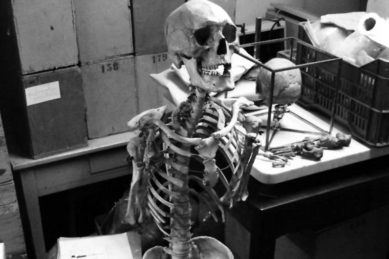"""""""Son 4 restos de cuerpos, de los cuales 1 está completo y está identificado con el nombre de Seriot. Además, hay 3 cráneos que no están identificados, aunque uno se sabe que pertenece a una mujer"""", sostuvo la directora provincial de pueblos originarios."""