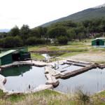 Conflicto con las termas de Río Valdez La empresa Roanmat analiza demandar por daños y perjuicios