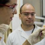 Convocan para Becas de Estímulo a las Vocaciones Científicas 2016