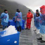 """Autoridades de Ciencia y Tecnología visitaron instalaciones de la empresa """"Salmones Magallanes"""""""