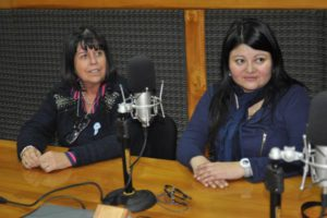 La legisladora del Frente para la Victoria, Marcela Gómez y por la UCR Liliana Martínez Allende.