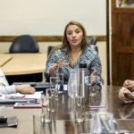 La Comisión de Educación junto a instituciones debaten proyecto de prácticas profesionalizantes