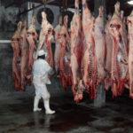 Tierra del Fuego con mataderos cerrados