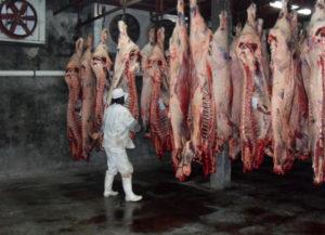 Malestar entre productores y carnicerías de la provincia por el cierre de los matarifes de la provincia.