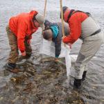 En la UTN, brindarán un taller de Fundamentos en Artes de Pesca