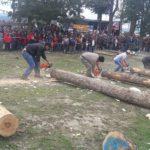 Se desarrolló en Tolhuin la Fiesta Provincial de la Lenga