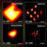 Logran la máxima resolución en microscopios de fluorescencia