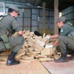 Gendarmería incautó 47 kilos de marihuana y allanó casa del subjefe de policía