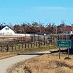 Pérdidas de casi $6 millones tras el robo de 297 vacas en Pirinaica