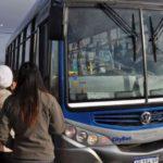 Río Grande contará con 26 colectivos cero kilómetro