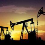 Bertone y Nogar presentaron al ministro Aranguren las inversiones de Total