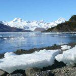 Chile creará Área Marina Protegida en la Tierra del Fuego