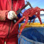 El COFECYT adjudicó el primer proyecto a Tierra del Fuego
