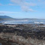 Científicos del CONICET investigan un histórico naufragio del siglo XVIII encallado en Tierra del Fuego