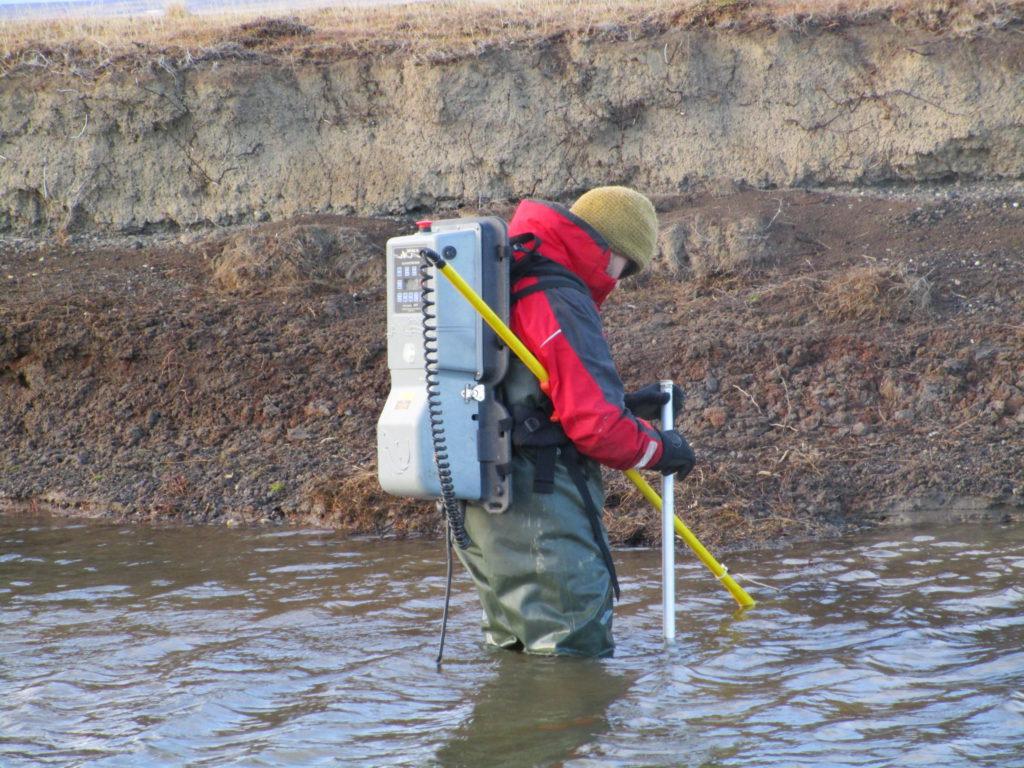 """El científico del CADIC Tomás Chalde, doctorado en Biología Molecular y Biotecnología, dialogó con Radio Universidad 93.5 sobre el proyecto que está en evaluación y propone """"generar un recurso a través de la pesca recreativa"""" del salmón Chinook, conocido también como salmón Rey o salmón del Pacífico."""