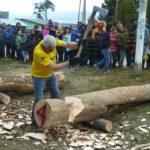 Tolhuin se prepara la XVII Fiesta Provincial de la Lenga