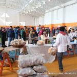 Se vendieron 20 mil kilos de alimentos en 'La Feria en tu Barrio'