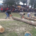 El jueves comienza la XVII Fiesta de la Lenga en Tolhuin