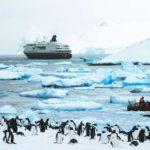 """""""Ya el 90 por ciento del turismo antártico está operando en nuestro puerto"""""""