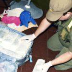 Gendarmería secuestró siete kilos de cocaína en Río Grande