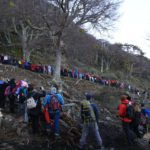 Más de 350 personas abrazaron simbólicamente un árbol para proteger el bosque nativo
