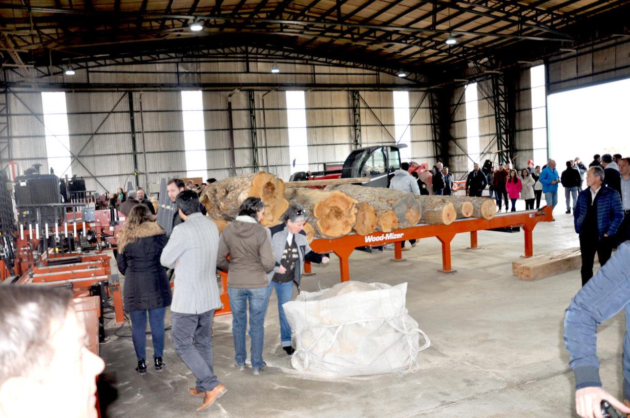 El secadero permitirá exportar al mundo lenga de alta calidad con valor agregado de secado y clasificación