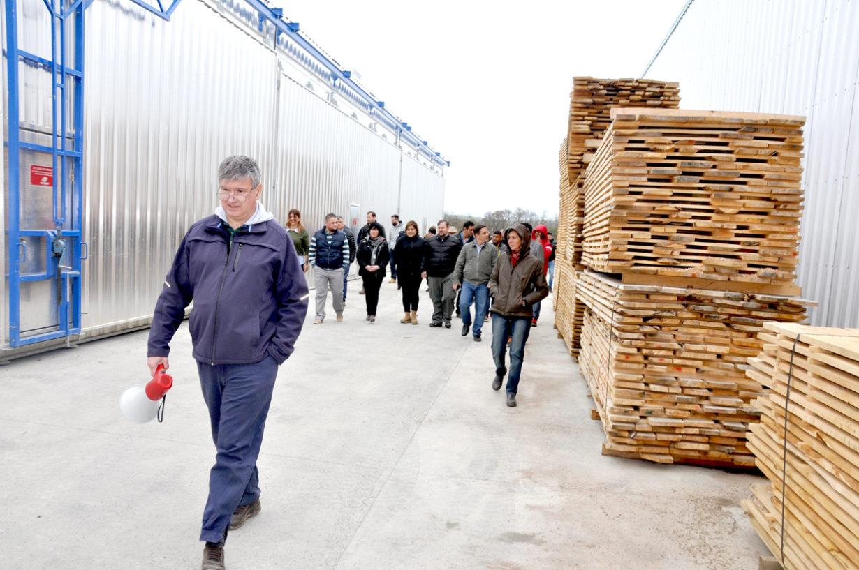 """En diálogo con Radio Universidad 93.5, el gerente local de Lenga Patagonia, Nicolás Kelsey, detalló que """"el proyecto está concebido para que podamos producir mensualmente entre 20 y 25 contenedores de madera seca y clasificada para destinarla a fábricas de muebles, en principio para el mercado externo""""."""