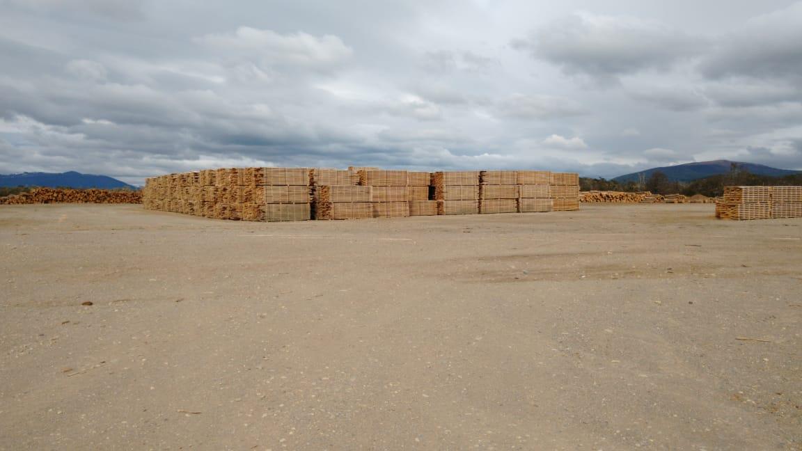 Quedó inaugurada inauguró el Secadero de Lenga Patagonia