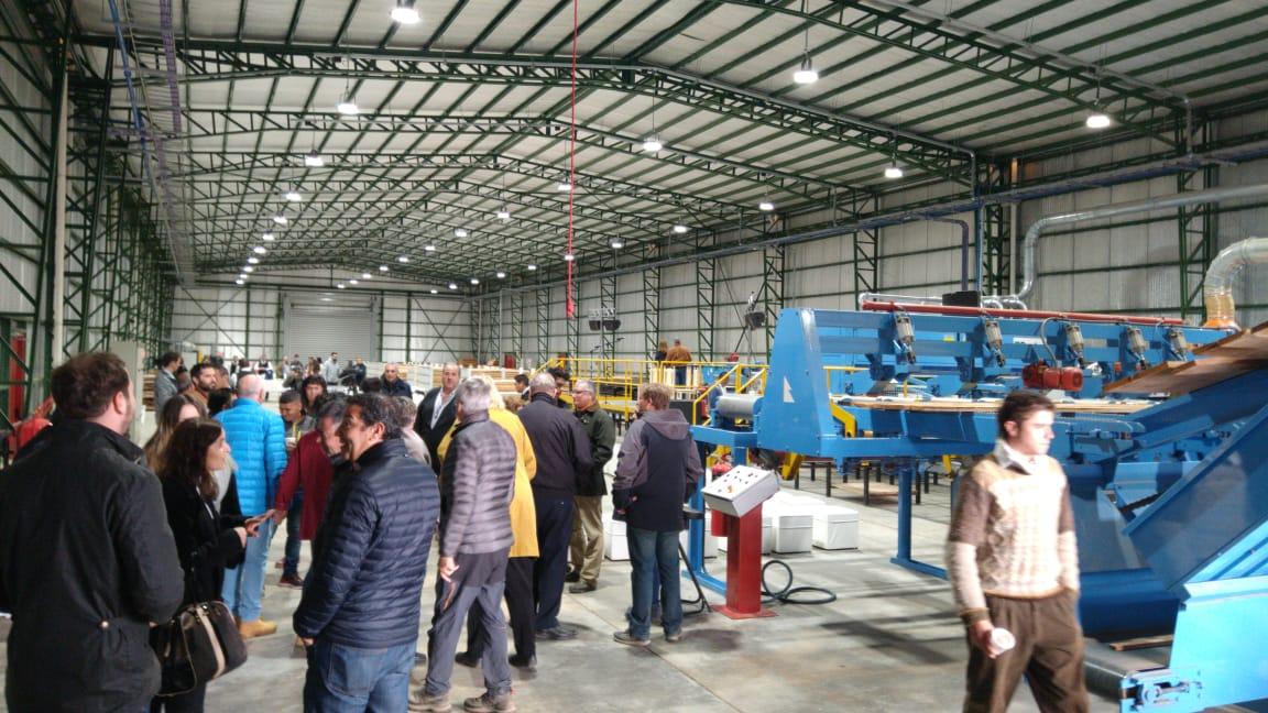 Cientos de visitantes participaron de la inauguración de Secadero de Lenga Patagonia en Tolhuin