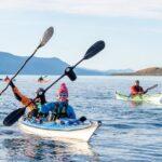 Kayakistas de Argentina y Chile unidos en el Canal Beagle contra las salmoneras