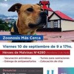 Este viernes se realizará una nueva jornada de 'Zoonosis más Cerca'